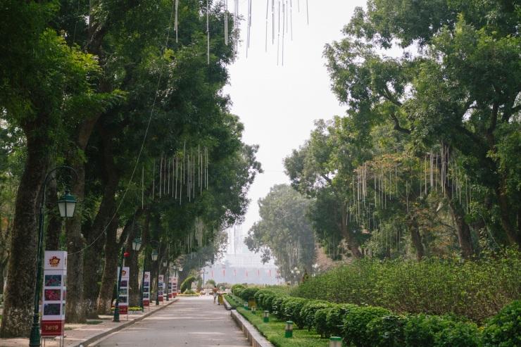 rachel-walker-portrait-photography-travel-asia-vietnam-011