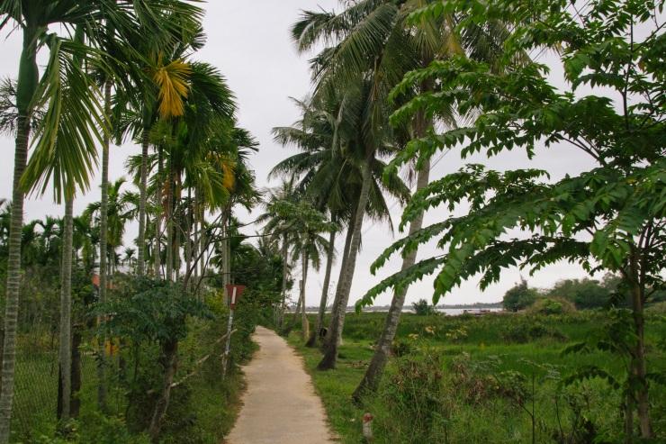 rachel-walker-portrait-photography-travel-asia-vietnam-083
