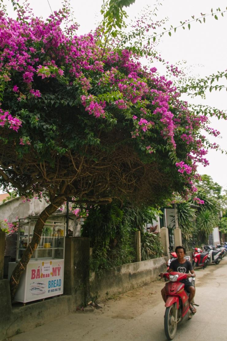 rachel-walker-portrait-photography-travel-asia-vietnam-088
