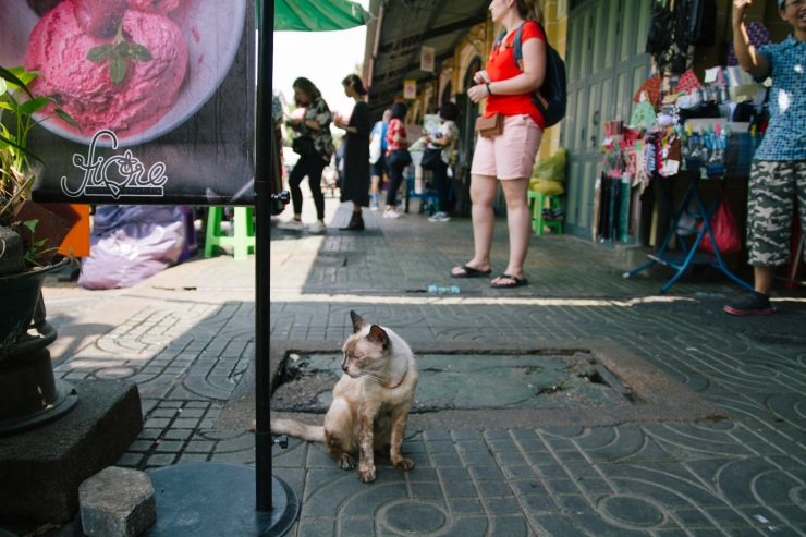 rachel-walker-portrait-photography-travel-london-thailand-50